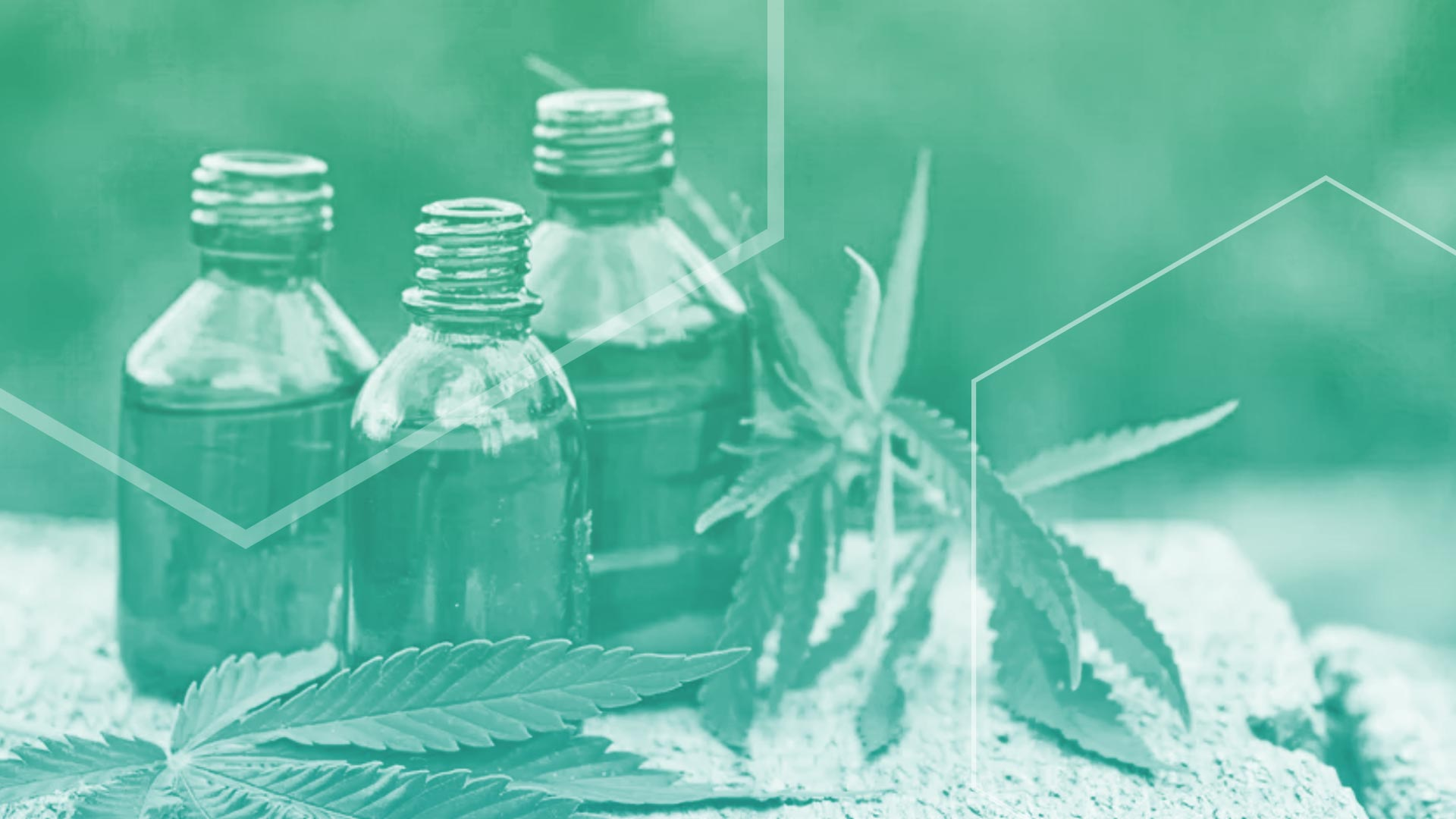 Your Guide to CBD Formats and Dosing